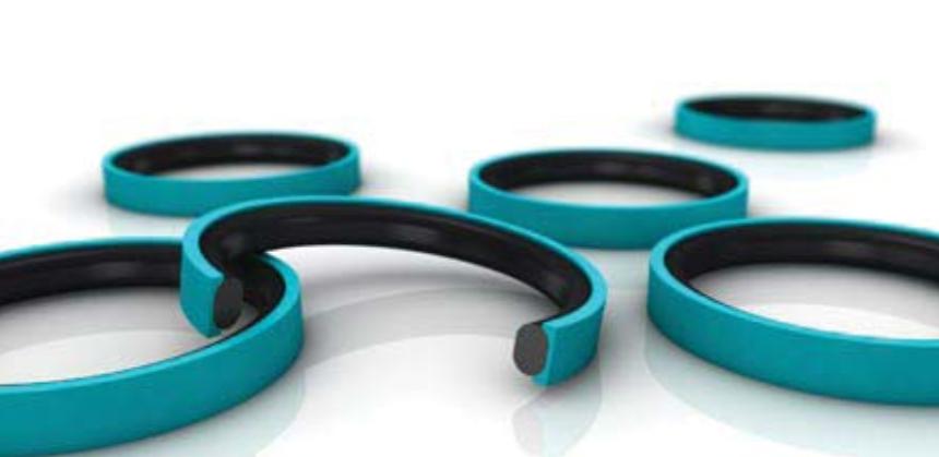 Trelleborg Sealing Solutions Simplimize case